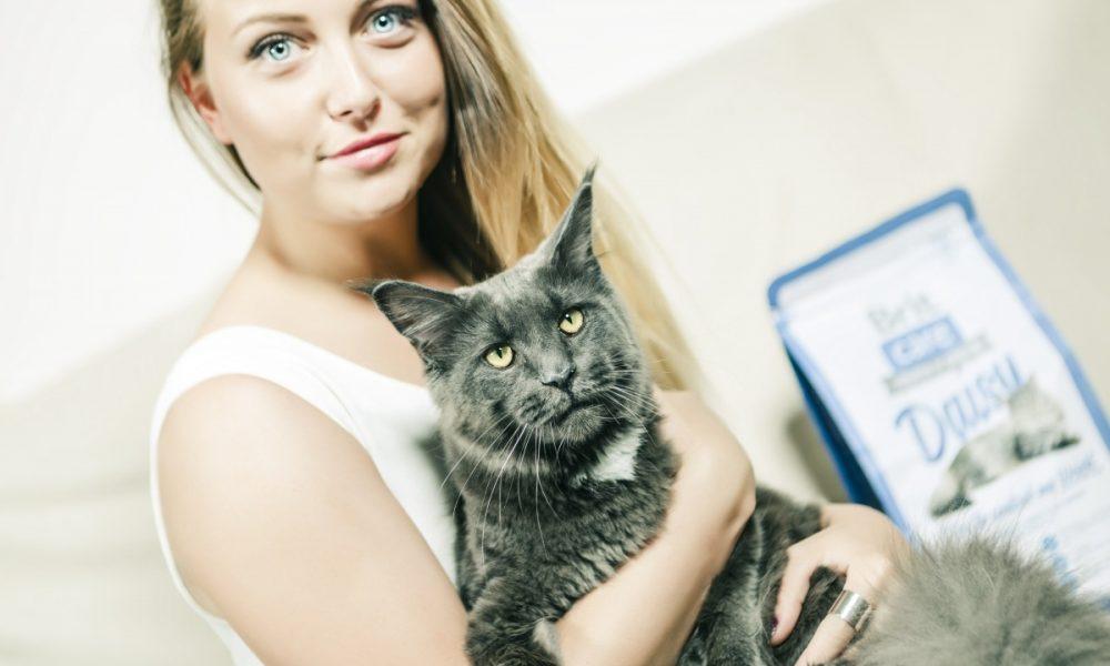 Brit Care Cat - image