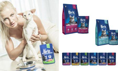 Brit Premium Cats life_1 (2)