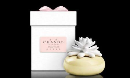 Chando - difuzer kaktus, vune Tulipan, 1352 Kc, ARIA PURA