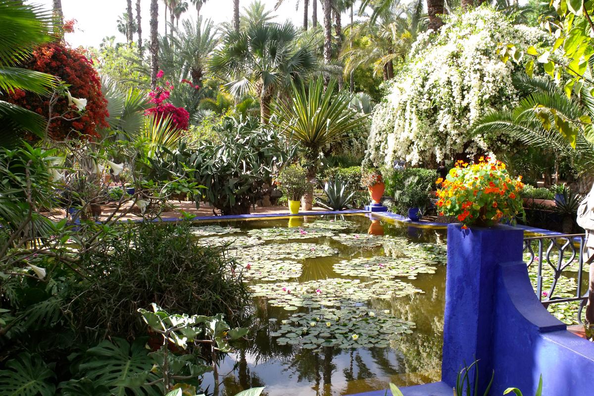 jardin majorelle2